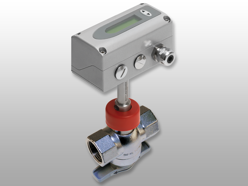 EE771 flow meter with measurement ball valve